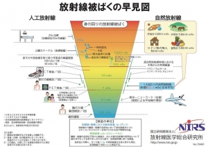 放射線被ばくの早見図